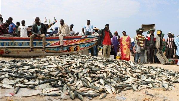 إصابة عشرات الصيادين السنغاليين بمرض جلدي