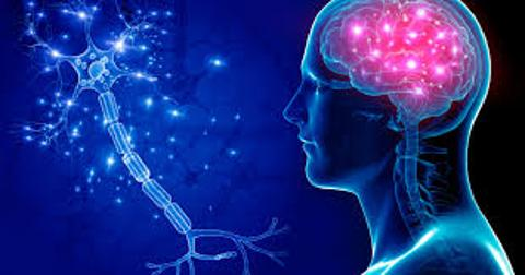 نستخدم 10% منه والموسيقى تحفز الذكاء.. 5 خرافات عن الدماغ دحضها العلماء