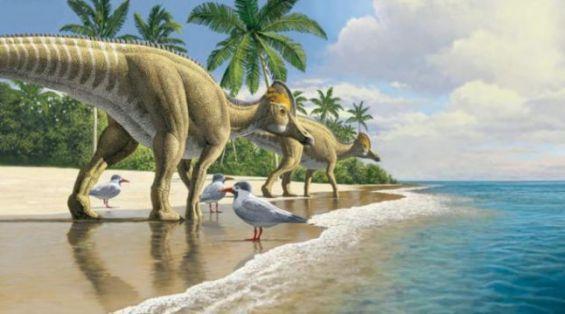 المغرب: اكتشاف بقايا ديناصور بمنقار بط عمره 66 مليون سنة