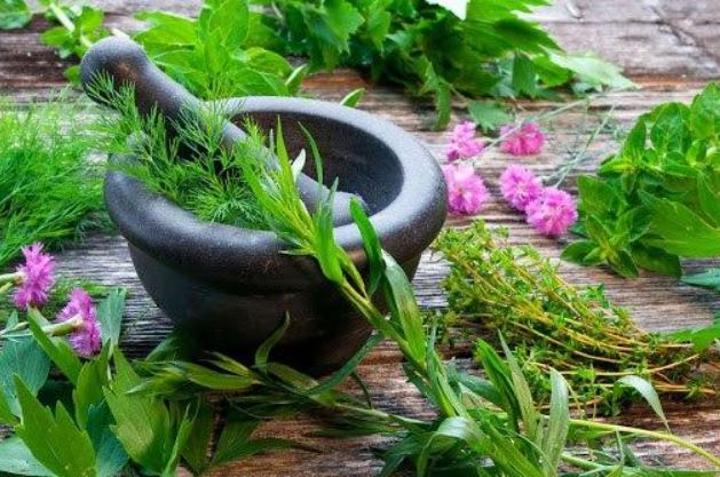 نباتات عطرية وطبية: المغرب يحتل المرتبة الثانية عالميا بحوالي 4200 صنف