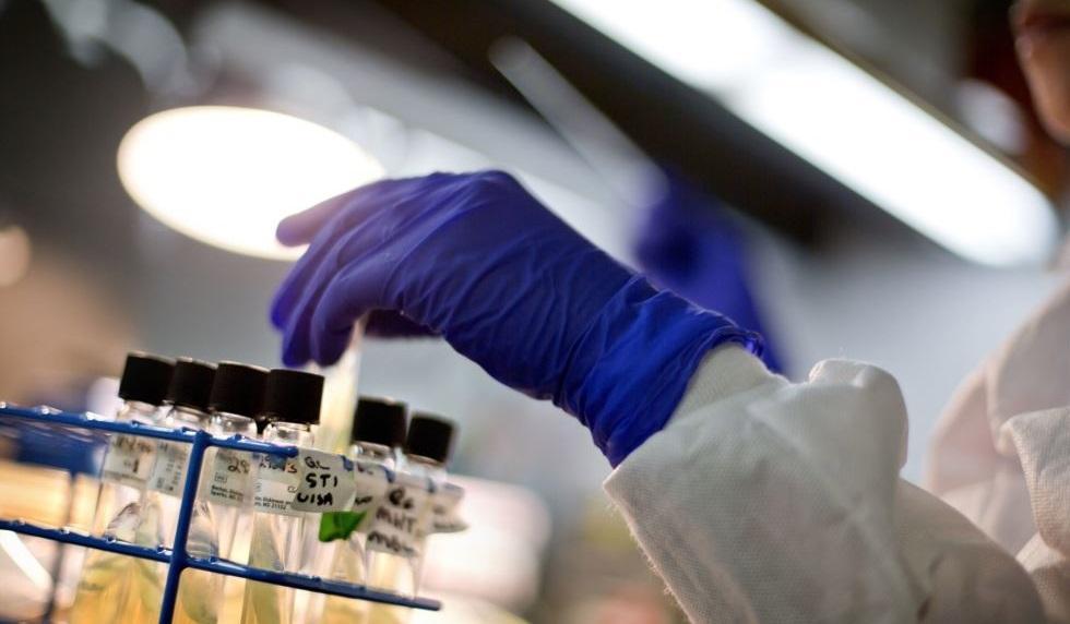 اسبانيا: اعتقال شخص بتهمة تسليم اختبارات PCR مزورة لمواطنين مغاربة