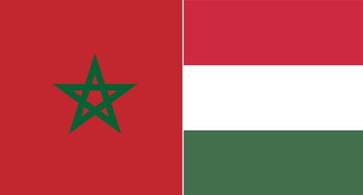 هنغاريا تشيد بالدور الحاسم والنموذجي للمغرب في مكافحة الهجرة غير الشرعية والإرهاب