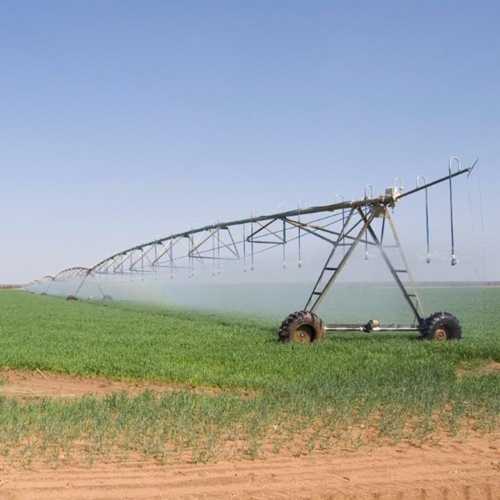 Uncertainty at Etunda green scheme - The Namibian