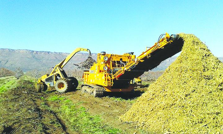 Bioeconomy gains global momentum - The Namibian