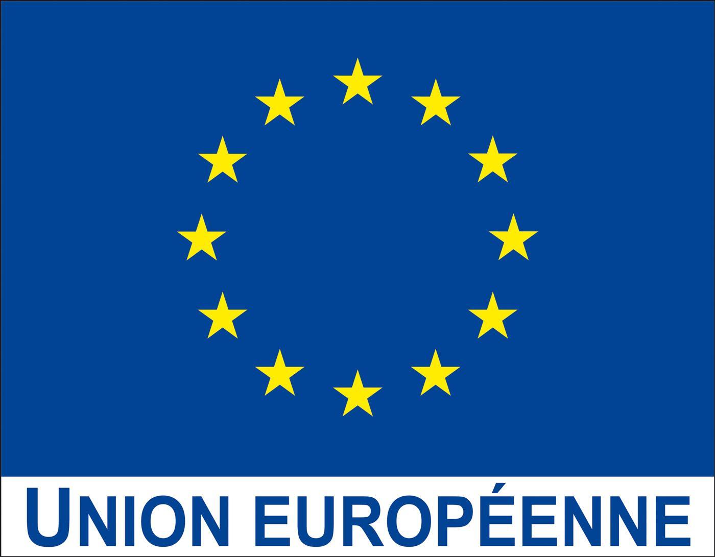 Fin de la visite conjointe Union européenne-OMS à Maradi