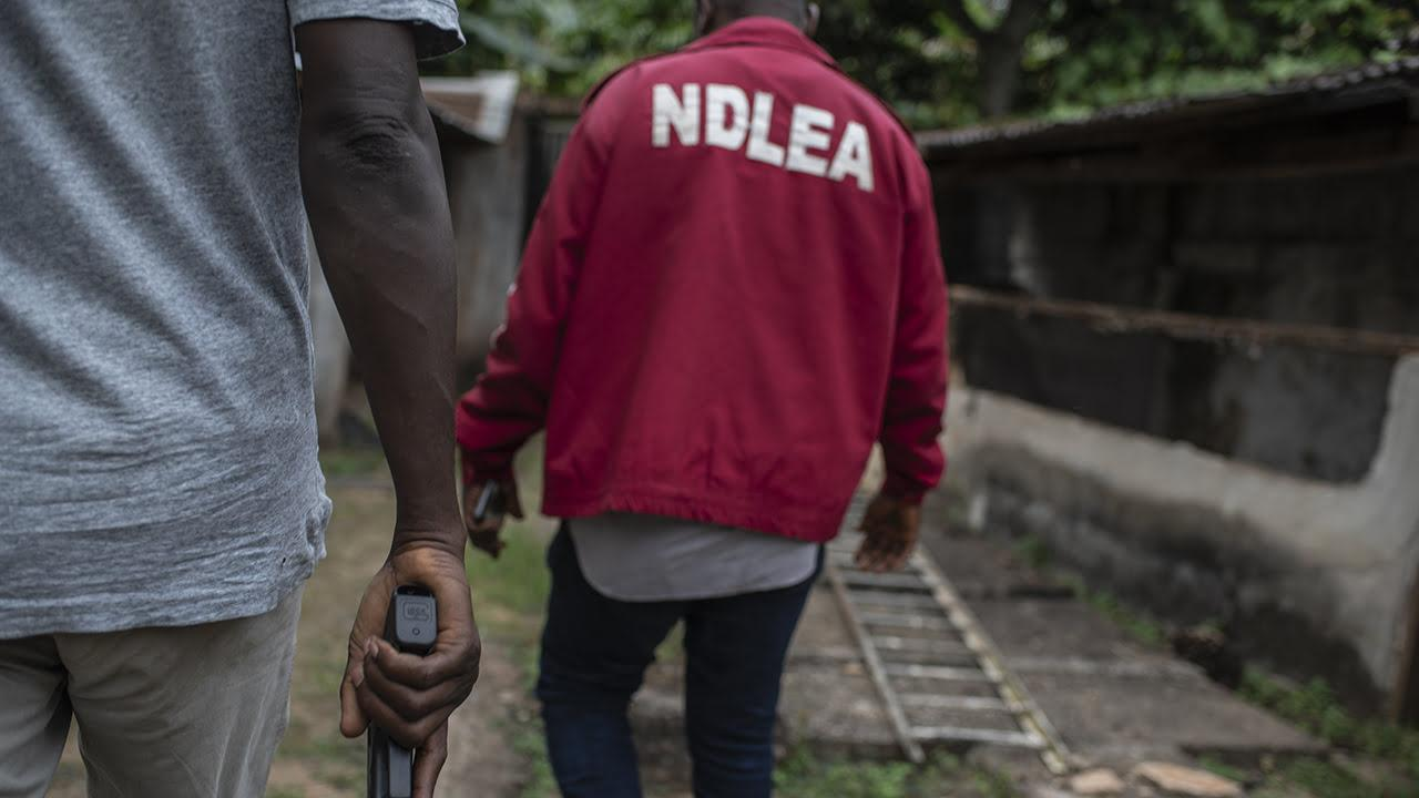 NDLEA nabs wanted drug baron, Ashoko, busts Edo cartel