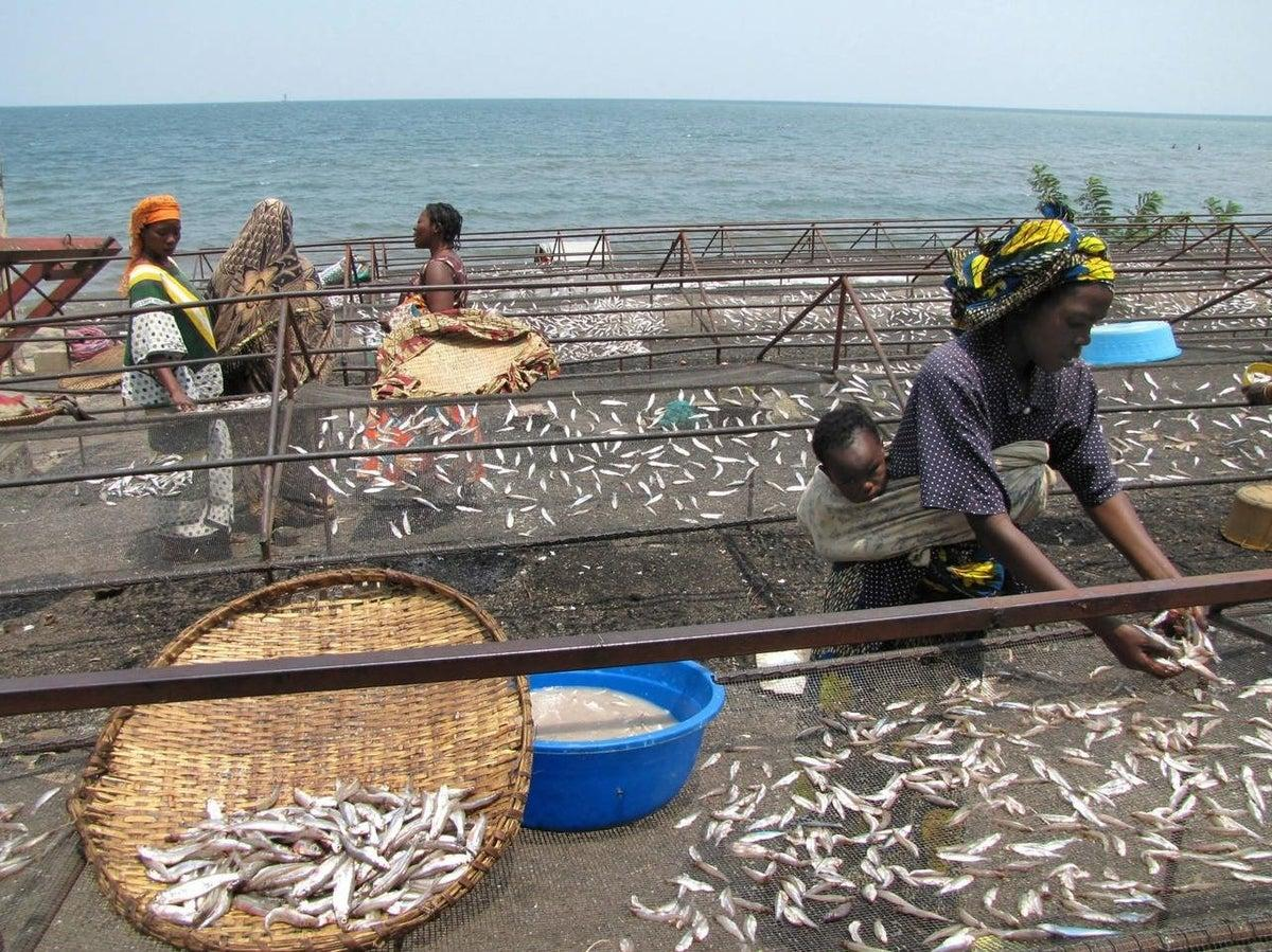 Traders upbeat as ban on fishing is lifted