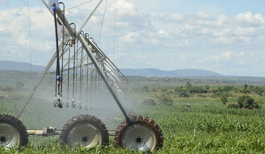 Farmers urged to harvest rainwater to offset shortage
