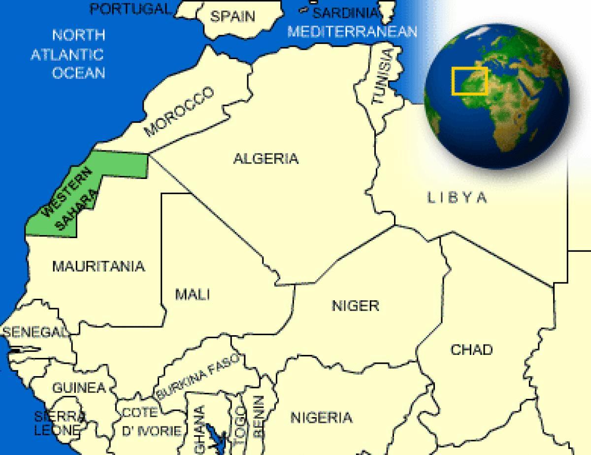 أكاديميون يطلقون عريضة دولية تدعو إلى إلغاء قرار ترامب حول الصحراء الغربية