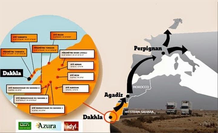 المرصد الدولي لمراقبة الثروات الطبيعية بالصحراء الغربية يحذر الشركات البرازيلية من استعمال الفوسفات الصحراوي
