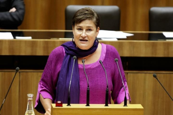 حزب نمساوي: الوضع في الصحراء الغربية قابل للانفجار،والولايات المتحدة مطالبة بتحمل مسؤوليتها