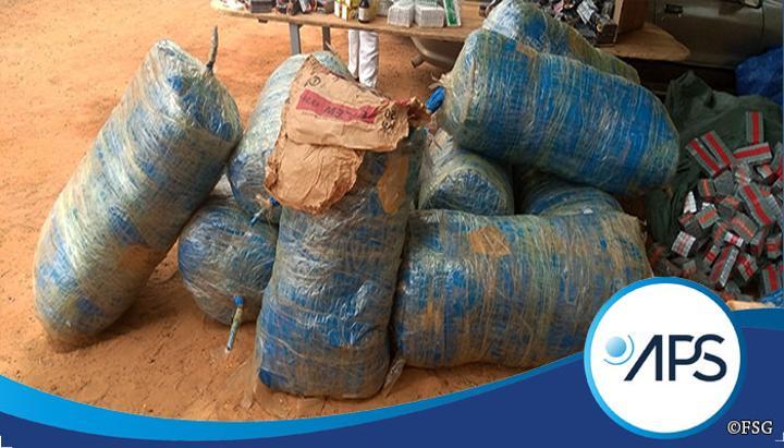 Plus de 1600 kg de chanvre indien saisis par les brigades des Douanes de Mbour et du Centre