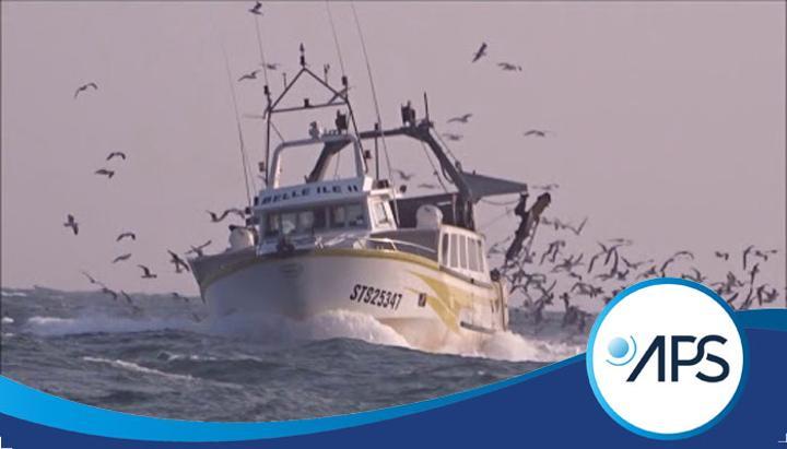 Le Sénégal dans une logique de réduction des bateaux de pêche (ministre)