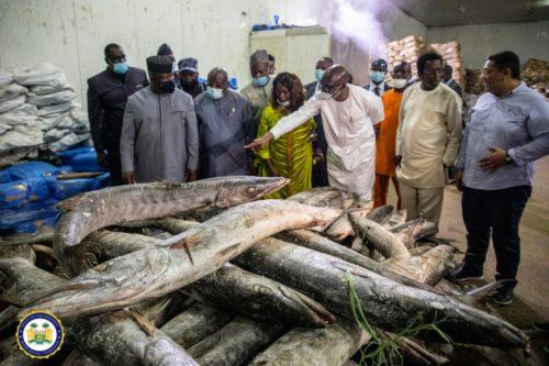 President Bio commissions $15 million fish processing plant