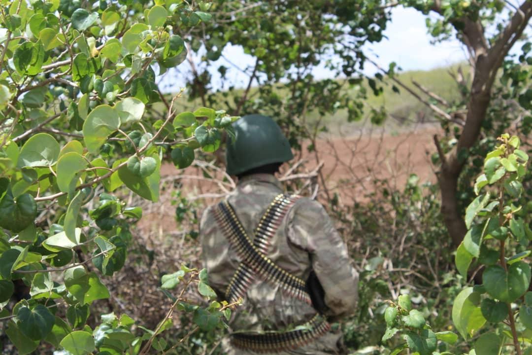 قيادة الجيش الصومالي ومسلحو الشباب يتحدثون عن الهجوم علي إقليم شبيلي السفلي