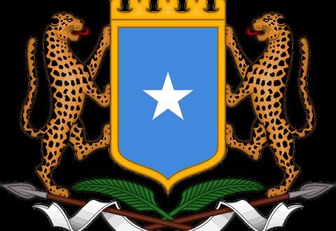 وزارة التعليم العالي الصومالية تنشر أسماء الجامعات المعتمدة لديها