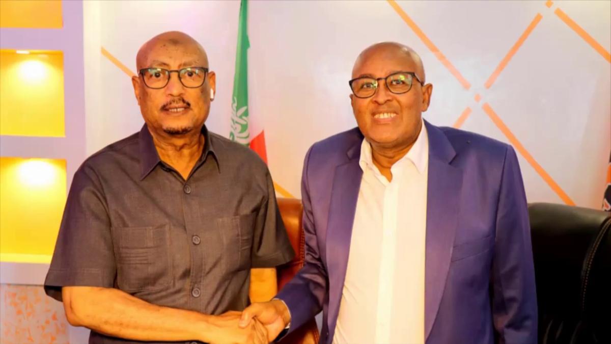 تحالف جديد لحزبي المعارضة في أرض الصومال