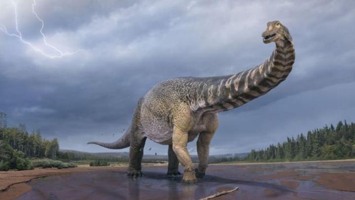 علماء أستراليون يصنفون ديناصوراً بالأكبر حجماً على الاطلاق