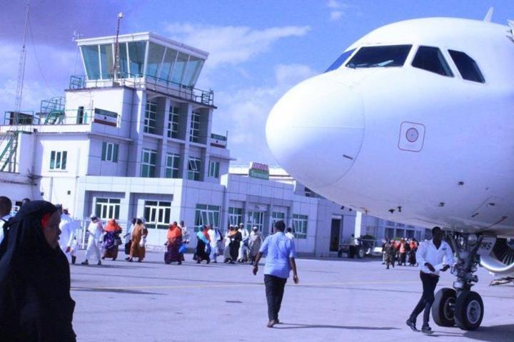 شرطة أرض الصومال تعتقل رجلا حاول تهريب 200 سحلية إلى مصر في مطار هرجيسا