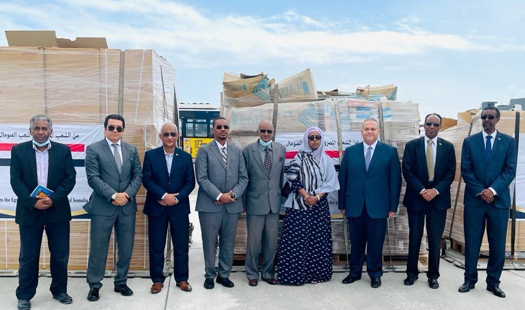 الجامعة العربية تسلم إمدادات طبية للحكومة الصومالية