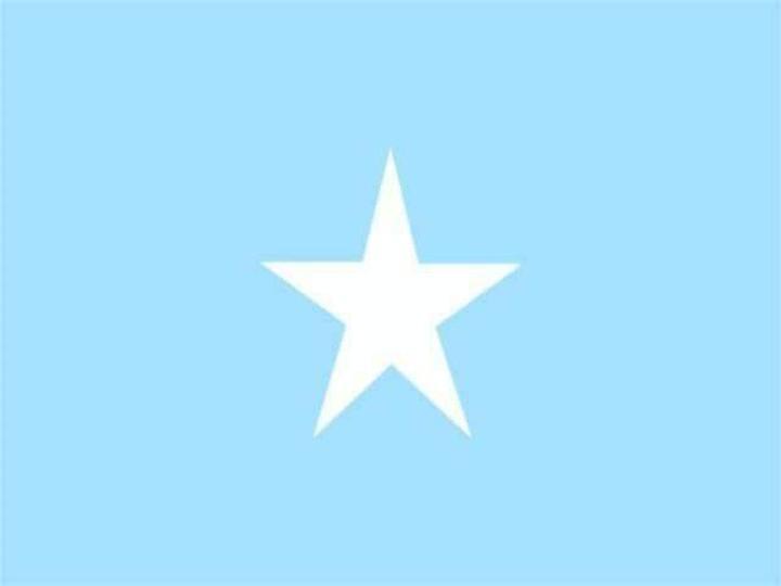الذكرى السنوية لمرور 67 عاما من تصميم العلم الوطني بجمهورية الصومال