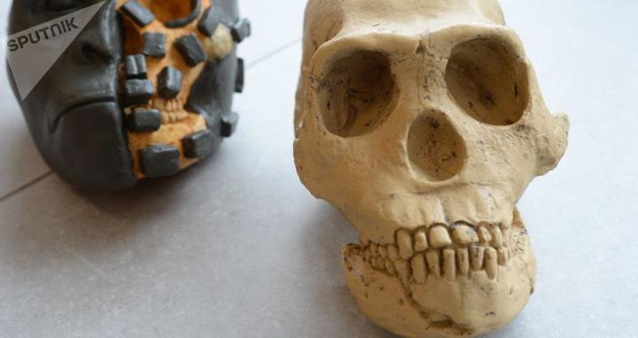 علماء يكشفون مدى ارتباط فترة ظهور أضراس العقل وطبيعة الجمجمة لكل إنسان