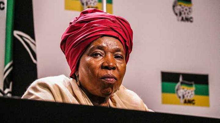 Electricity ombudsman not feasible, says Dlamini Zuma