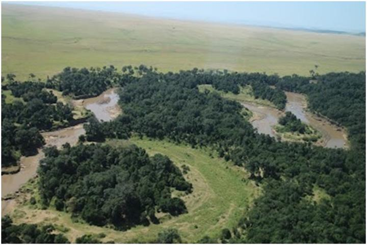 Gov't urges citizens to conserve nature