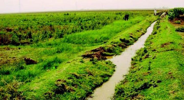 مزارعو الجزيرة: المالية عجزت عن سداد تكلفة صيانة الترع