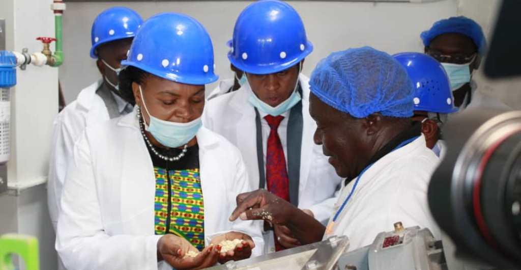 Bashe: Agribusiness will address unemployment