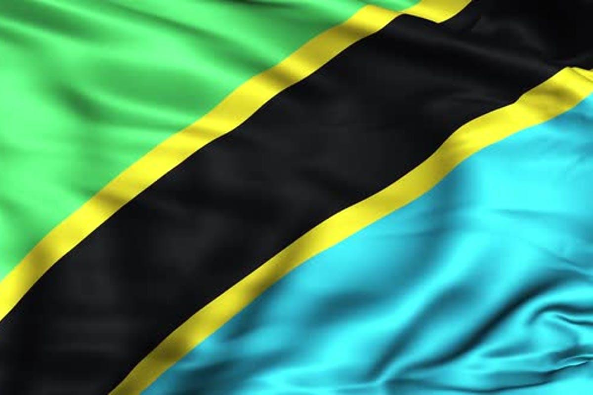 Tanzania elected UNGA 76th Vice-President