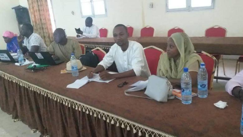 Tchad : une formation organisée pour éviter la transmission du VIH de la mère à l'enfant
