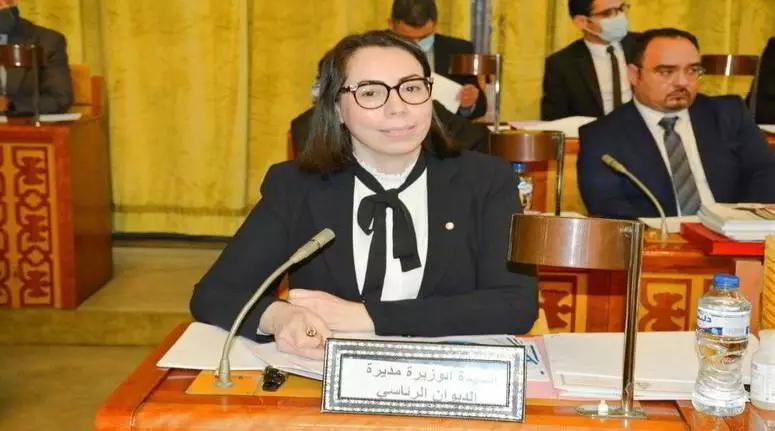 محمد كريشان: نادية عكاشة مسؤولة عن الفيديوالكارثي للرئيس قيس سعيد