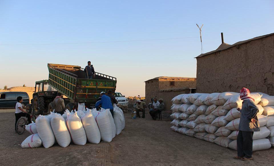 وزارة التجارة: إجراءات للتحكّم في أسعار المواد العلفية وتوزيعها حكر على شركة حبوب قرطاج