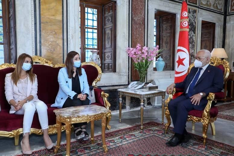 الغنوشي يستقبل وفدا من نقابة الفنانين التونسيين