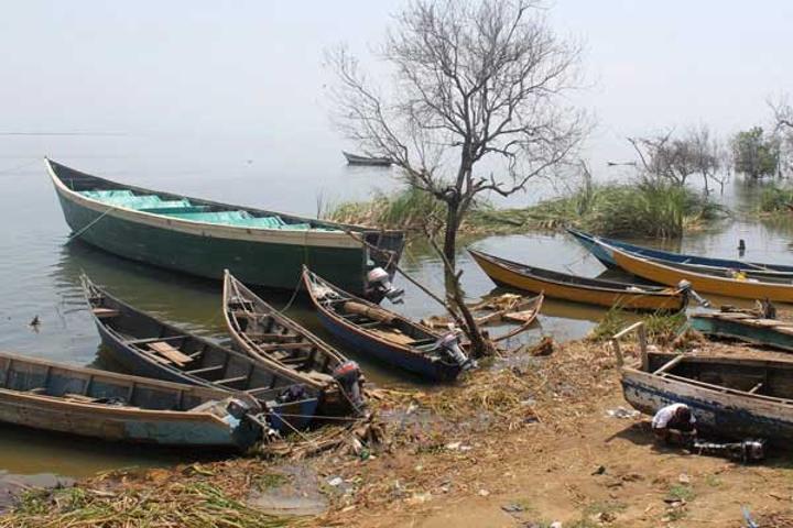 Govt sets tough rules for fishermen at Lake Albert