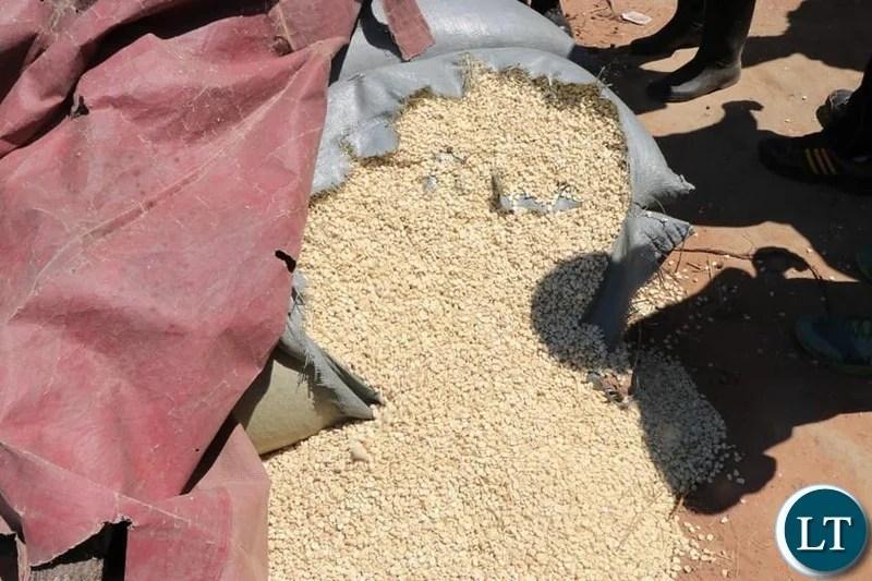 Kazungula farmers cry for empty grain bags from FRA