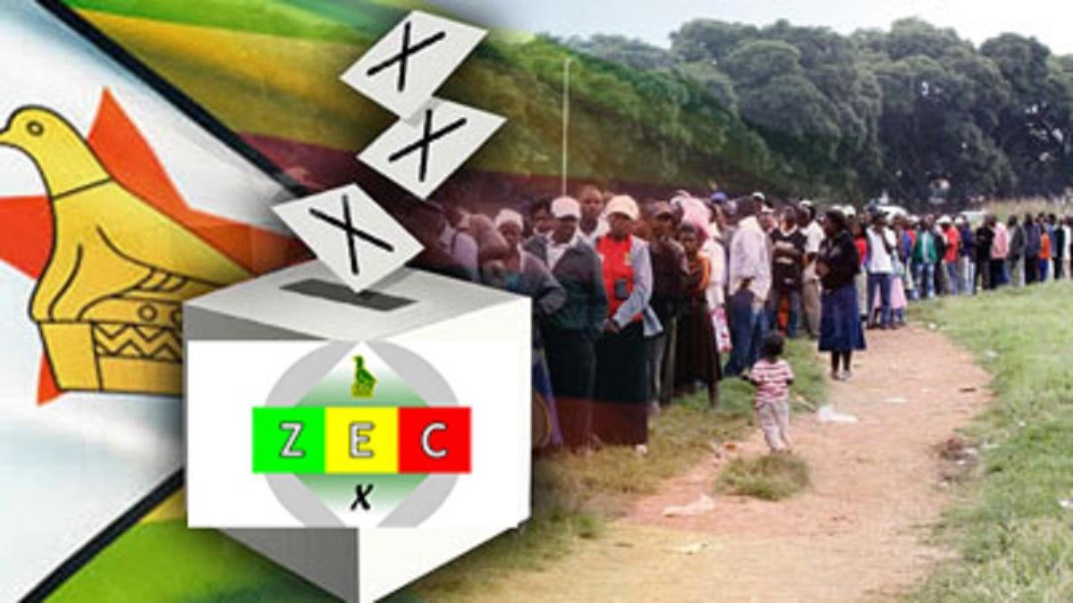 Election Watchdog: ZEC Must Consider Online Voter Registration