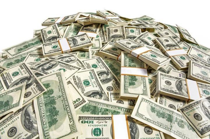 Govt Guarantees Flower Grower's US$750k CBZ Loan