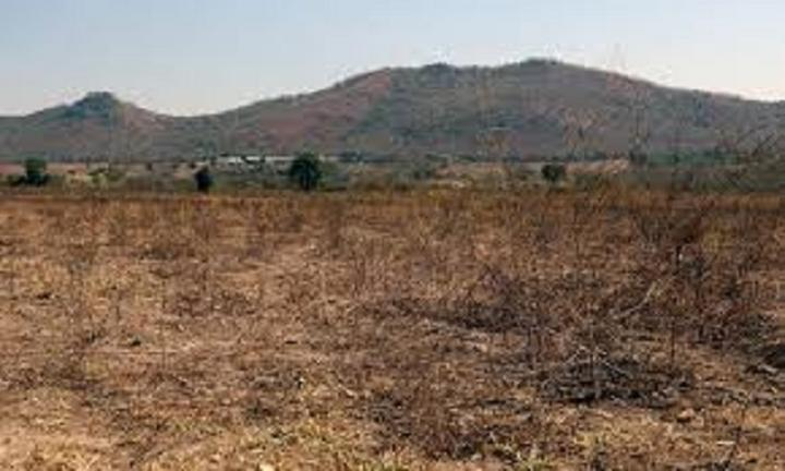 ZANU PF Youths Plan To Seize Farms From Party Bigwigs