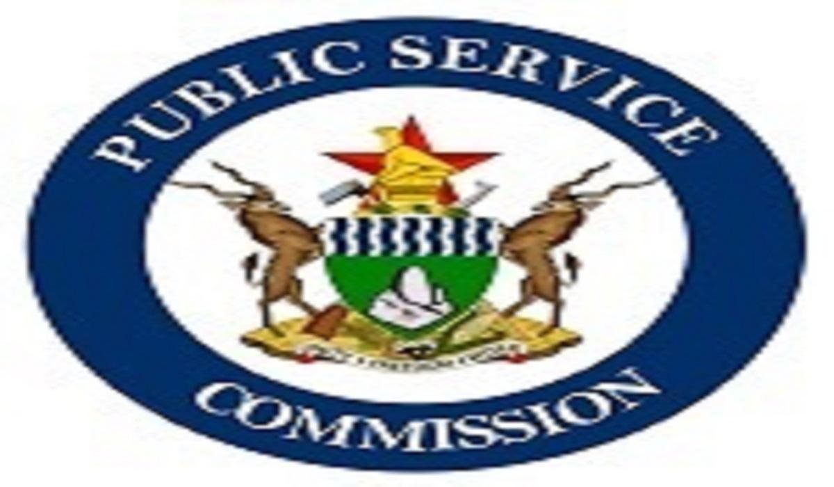 Memo On Organized Shopping Trips To South Africa is FAKE – Public Service Commission
