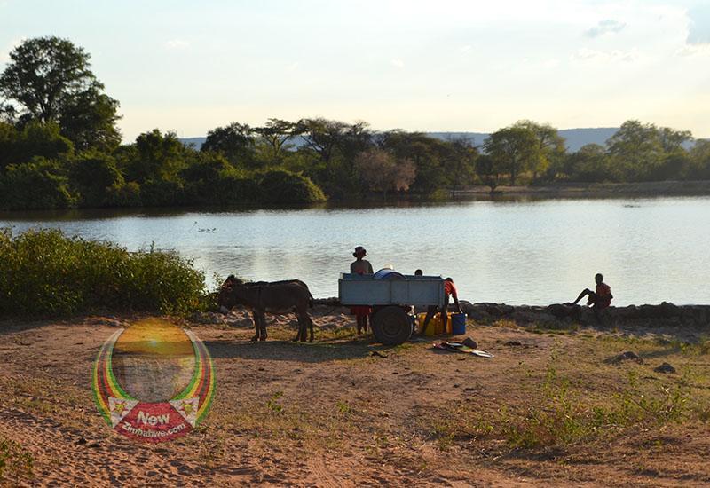 WFP's Resilience Initiatives Help Allay Water WoesIn Mwenezi